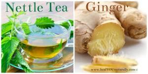 nettle-ginger-tea-image