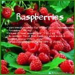 Raspberries health benefits