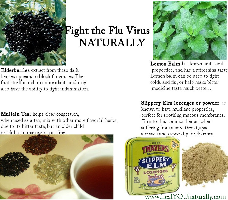 Flu and cold Natural Remedies