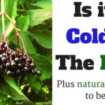 Is it a Cold or The Flu? Find Out Here. Plus The Natural Remedies to Beat It
