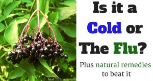 Cold and flu natural remedies