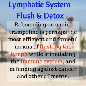 Lymph-flush-and-detox