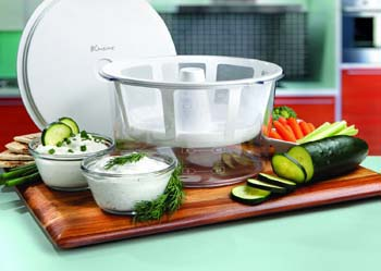 Christmas Presents yogurt maker