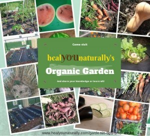 How To Grow An Organic Garden With Limited Space
