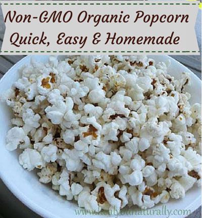 Back To Basic Organic Healthy Popcorn