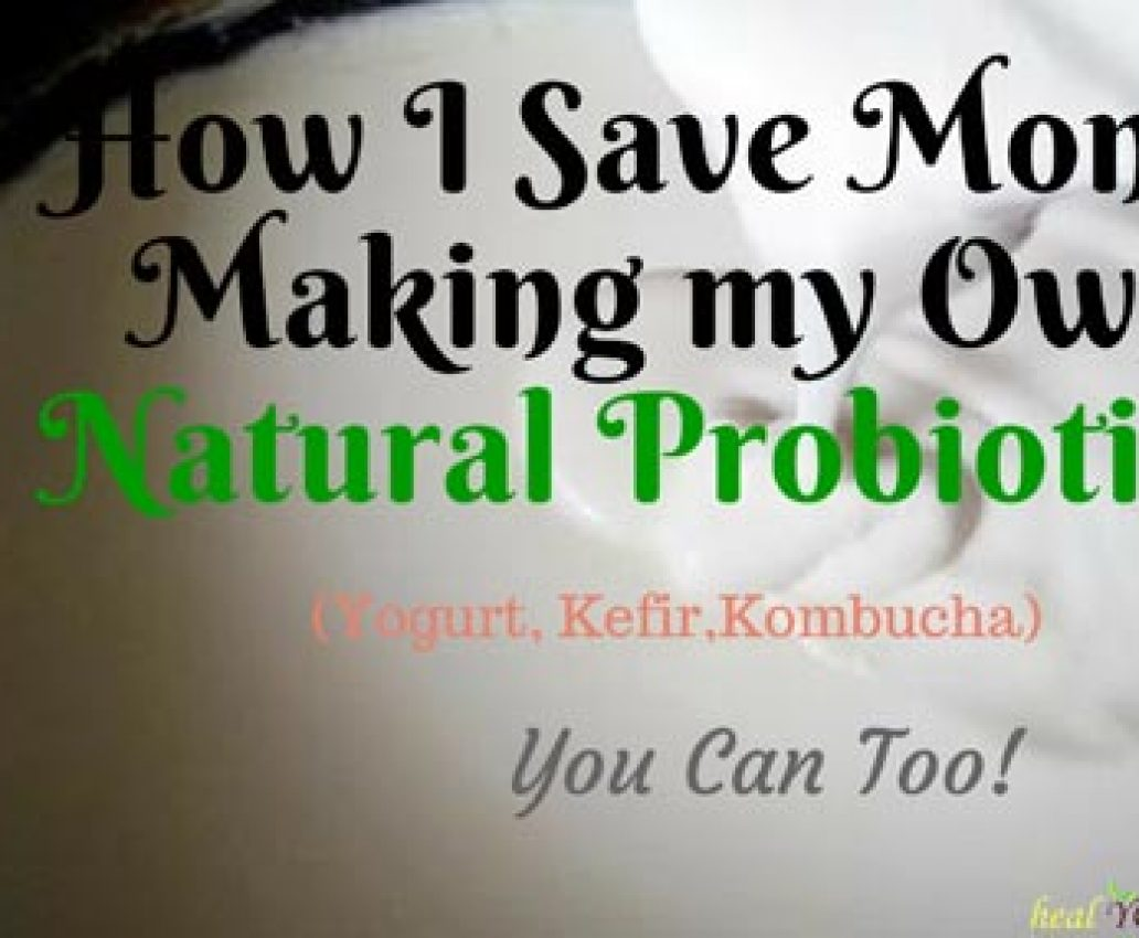 How I Save Hundreds Making My Own Natural Probiotics. You can too!