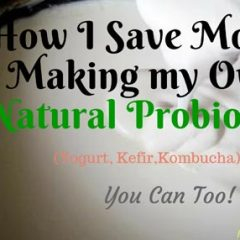save money how to make probiotics from home