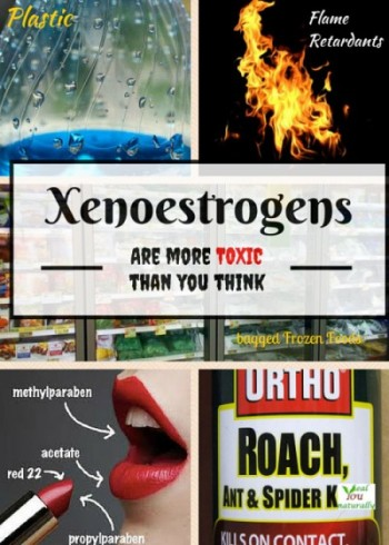 How Xenoestrogens or Endocrine Disruptors Are Harmful To Your Health (And What to Do About it)