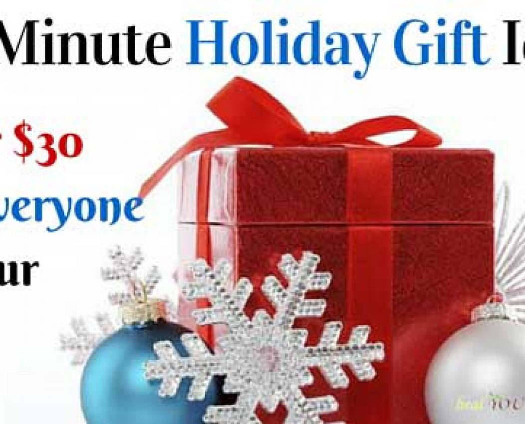 Last Minute Holiday Gift Ideas Under $30.00