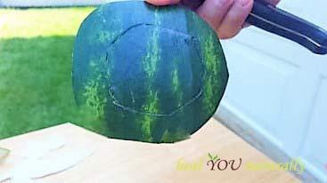 watermelon Tinkerbell theme teacup fruit