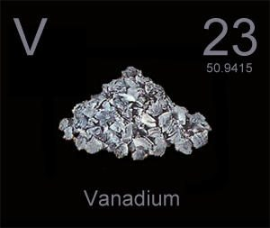 vanadium helps normalize blood glucose
