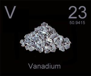 vanadium helps normalize blood glucose