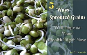 5 Ways Sprouted Grains Will Improve Your Health Right Now