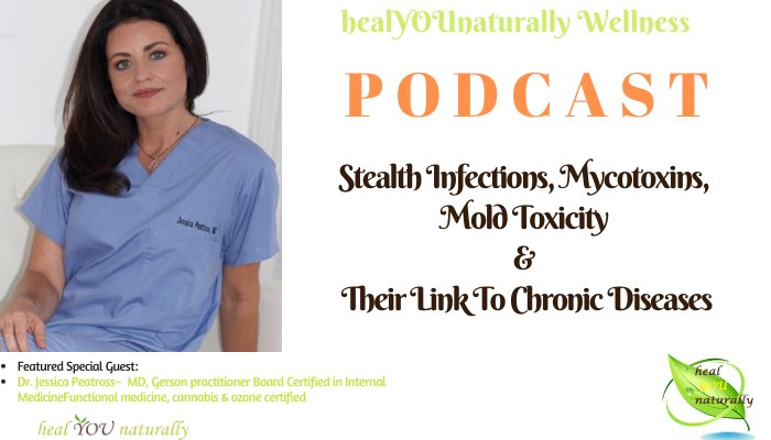 podcast17-mold-mycotoxins, toxins image