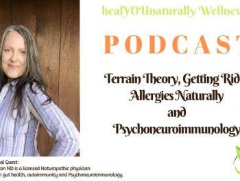 podcast 19 Terrain theory